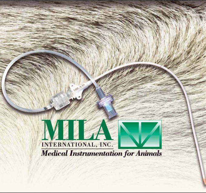 Long Term MILACATH Kits using guidewire introduction